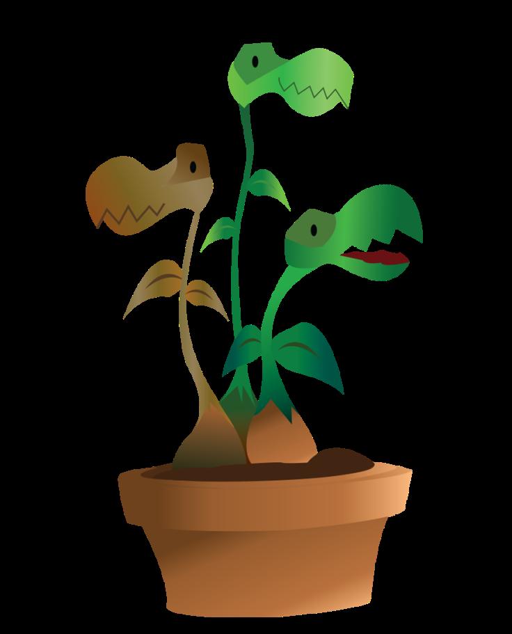 PlanteCarnivore